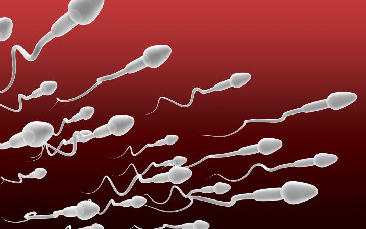 Cómo aumentar la producción de esperma