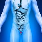 ¿Qué es la inflamación prostática? Prevención, síntomas y tratamiento