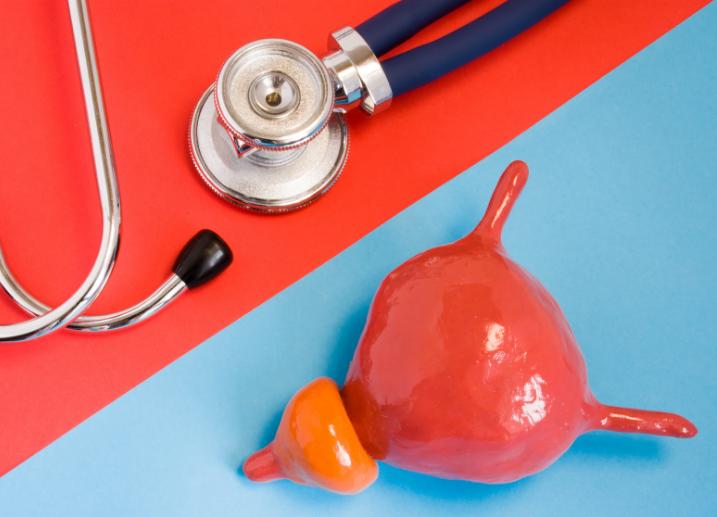 Próstata: qué es y dónde se encuentra